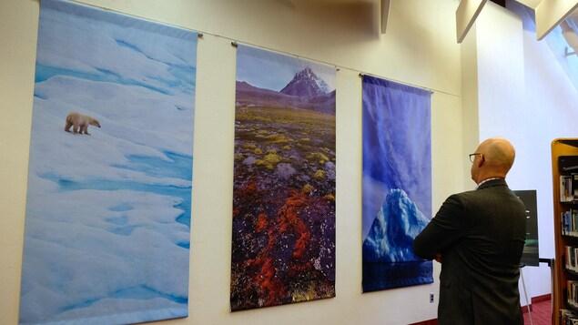 Photos d'un ours sur la banquise et paysages de l'Arctique avec un visiteur de l'exposition