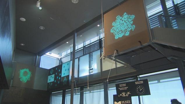 Des oeuvres de Nathalie Lavoie exposées dans le Musée.