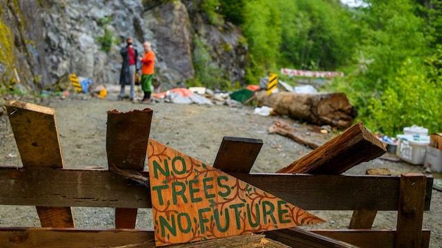 Sans arbre, pas de futur, lit-on sur une affiche.