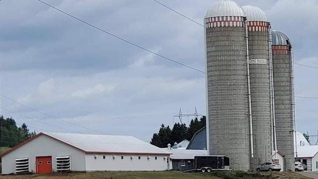 Les installations de la ferme laitière Masika, à Saint-Mathieu-de-Rioux.