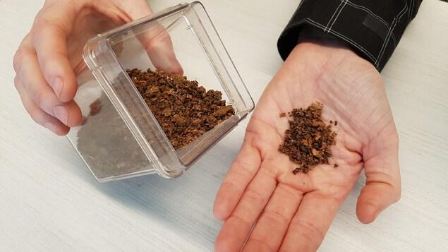 Le petit appareil permet de produire du fertilisant en quelques heures