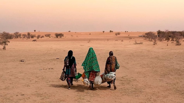 Trois personnes marchent dans le désert avec des bagages.