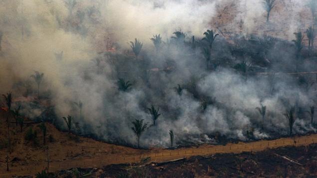 Une vue aérienne d'une partie de la forêt amazonienne en feu. On voit une épaisse fumée qui s'en échappe.