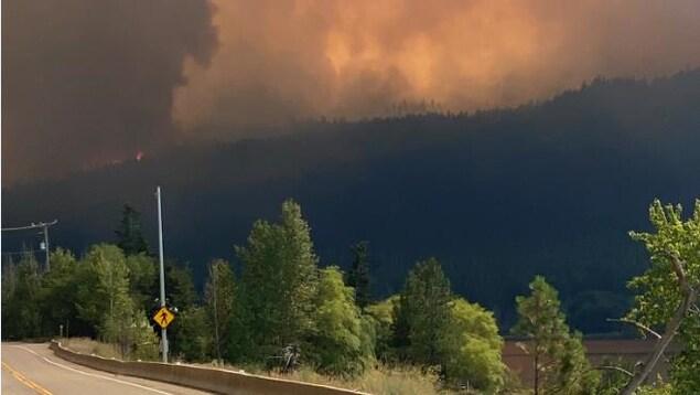 Des flammes brûlent dans une forêt au loin et beaucoup de fumée s'en échappe dans le ciel.
