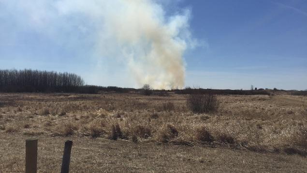 Terrain vague dans les prairies avec de la fumée au loin provenant d'un feu de broussaille