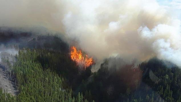 La fumée monte de ce secteur du brasier.
