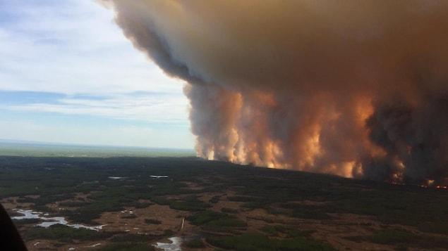 Un énorme panache de fumée s'élève dans le ciel en raison d'un feu de forêt.