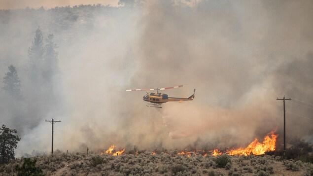 Un hélicoptère relâche de l'eau sur un feu de forêt.