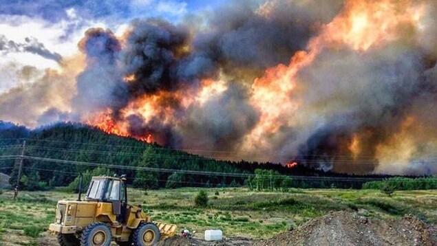 Un feu de forêt fait rage près de Williams Lake, en Colombie-Britannique