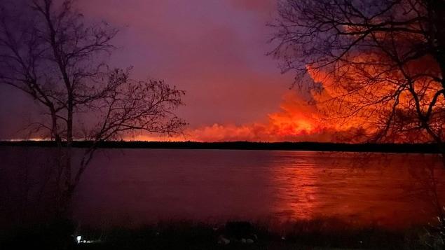 Un feu et de la fumée au loin dans la forêt.