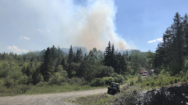Un chemin de terre au milieu d'une forêt et de la fumée dans le ciel.
