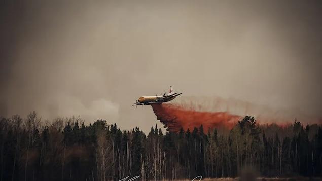 Un avion-citerne tente d'éteindre un feu.