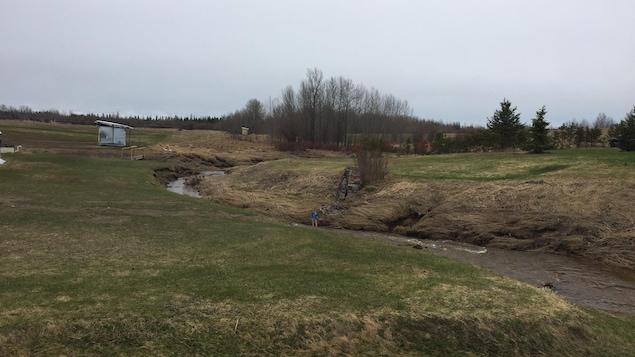 Un ruisseau traverse un champ. Des cabanes et des fleurs se trouvent près du bord du ruisseau.