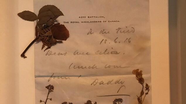 Des fleurs séchées sur une lettre manuscrite