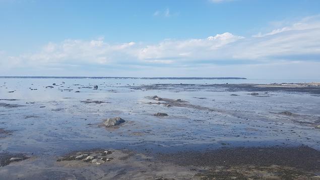 En raison de la marée basse, des roches sont visibles au bord du fleuve. Une île se dessine à l'horizon.