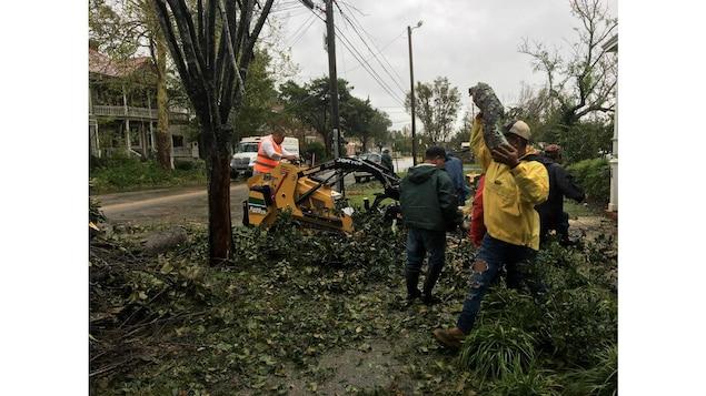 Des hommes ramassant des morceaux de branches tombés sur la chaussée.