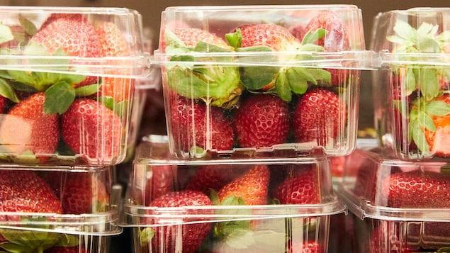 Des fraises dans des emballages de plastique.
