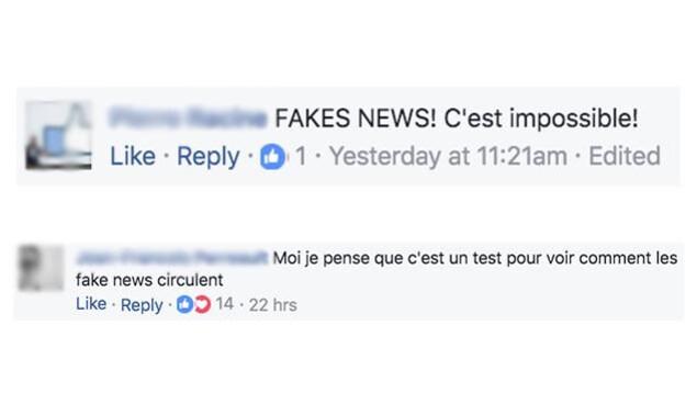 Capture d'écran de commentaires sur un canular sur Facebook. Les gens affirment qu'il s'agit de «fake news».