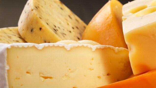 Divers fromages, dont un brie, un fromage suisse et un havarti, présentés en gros plan.