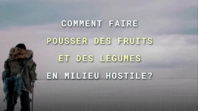 Comment faire pousser des fruits et des légumes en milieu hostile?