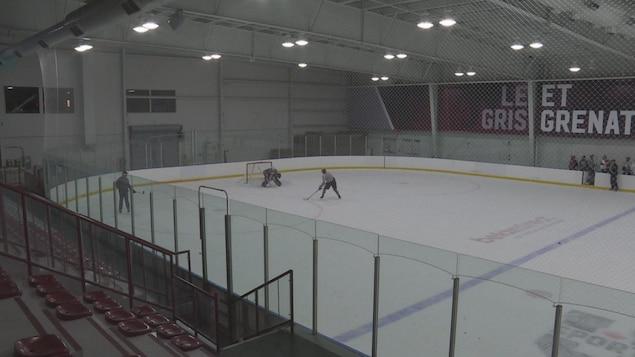 Des hockeyeurs sur la glace