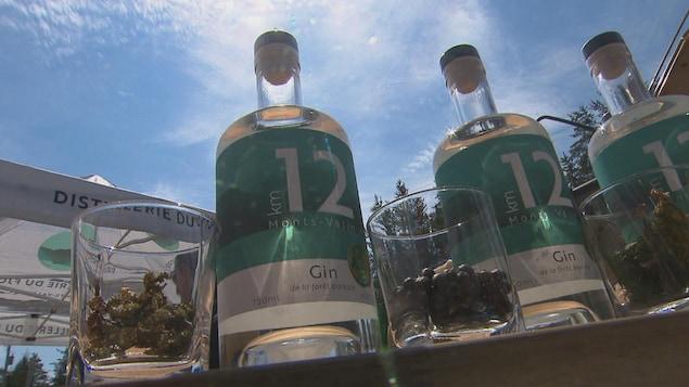 Des bouteilles de gin Km 12