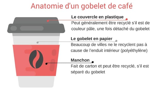 Le couvercle : En plastique, peut généralement être recyclé s'il est de couleur pâle et est détaché du gobelet. Le gobelet : Beaucoup de villes ne le recyclent pas même s'il est fait de carton, à cause de l'enduit intérieur. Manchon : Fait de carton et peut être recyclé, s'il est séparé du gobelet.