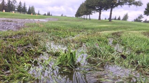 La pluie inonde les terrains de golf d'Abitibi-Témiscamingue