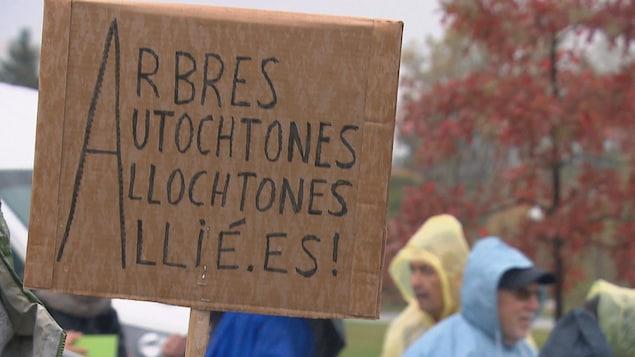 Une pancarte intitulée «Arbres autochtones allochtones allié.es».