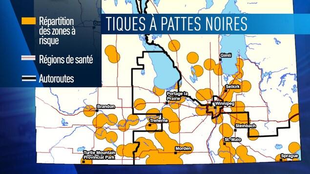 Une carte du Manitoba avec des ronds jaunes qui indiquent les zones à risque pour les tiques à pattes noires.