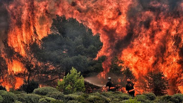 Les feux de forêt près d'Athènes ont fait plus de 70 morts.