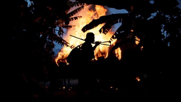 La silhouette d'un homme devant un feu de camp, en pleine forêt amazonienne.
