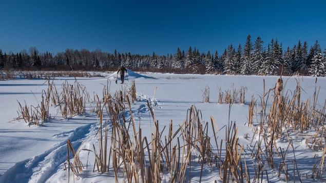 Luc Farrell en raquettes dans un sentier bois d'Abitibi-Témiscamingue.