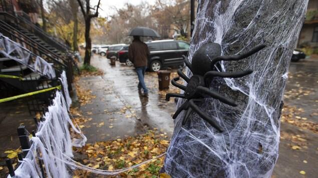 Une araignée en plastique et sa toile blanche sont accrochées à un arbre. En arrière-plan, un homme marche sous son parapluie.