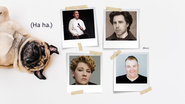 Un collage de photos où on voit un chien carlin.