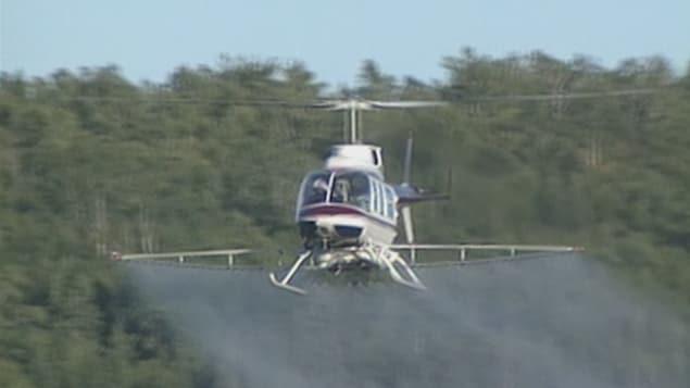 Un hélicoptère qui épand des herbicides