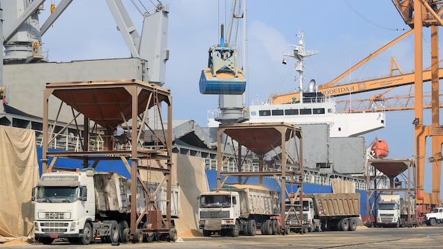 Plusieurs camions sont chargés de blé au port de Hodeïdah.