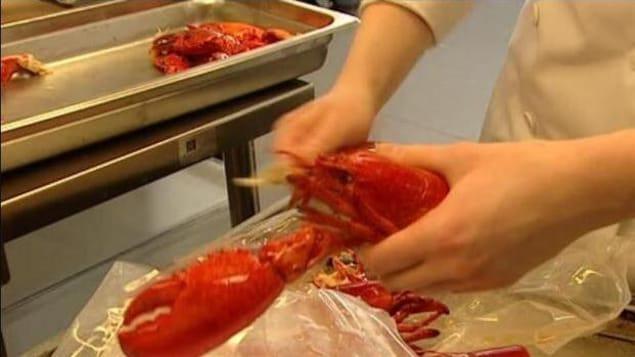 Un homard cuit se fait décortiqué dans une usine.