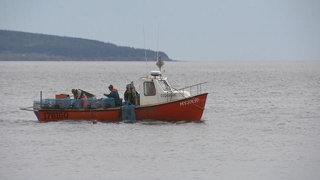On voit un bateau avec trois hommes à bord. Ils pêchent le homard. Des casiers se trouvent dans le bateau.
