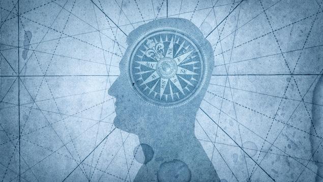 Illustration d'un humain possédant un compas dans le cerveau.