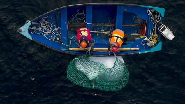 Deux personnes dans une chaloupe tirent un morceau d'iceberg à l'aide d'un filet.