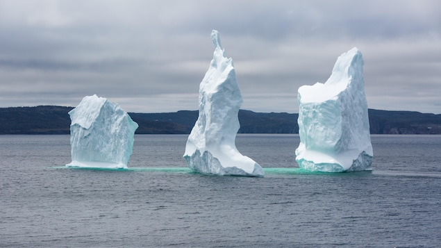 Un iceberg dans la région de Bonavista en 2018.