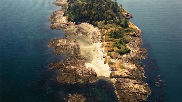 Photographie aérienne d'une île constituée d'une petite forêt de connifères, de sable et de rochers situés dans des eaux turquoises.