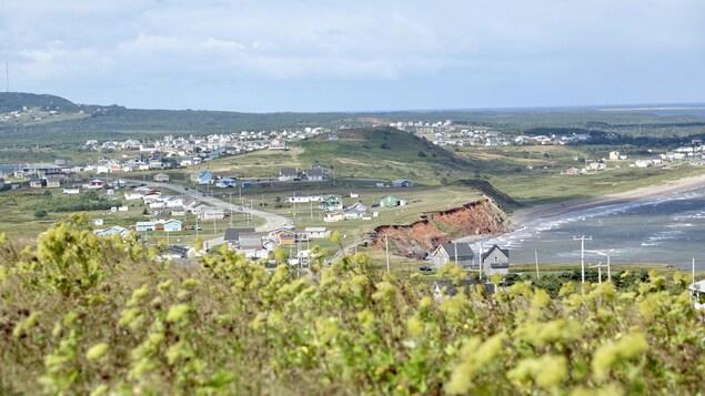 Un paysage madelinot où on voit des collines, des maisons et la mer à Havre-Aubert avec des fleurs en avant-plan.