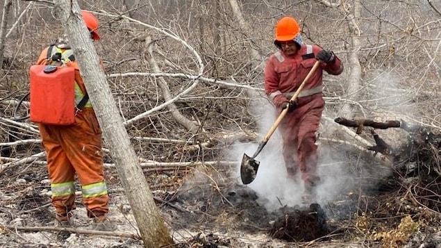 Deux pompiers dans un coin de forêt, où de la fumée s'échappe de broussailles.