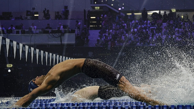 Des nageurs au départ d'une épreuve de dos