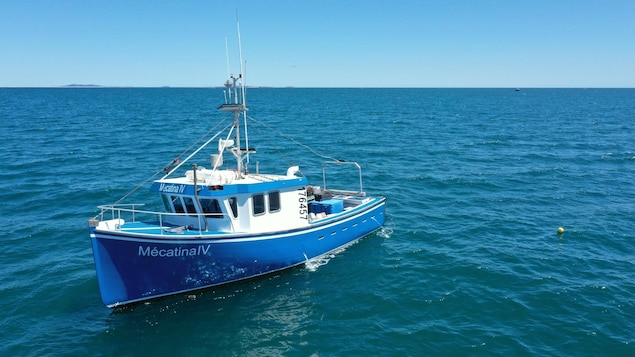La bateau peut accueillir jusqu'à 12 touristes pour des excursions.