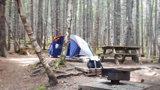 Une tente se trouve dans la forêt sur un terrain de camping rustique.