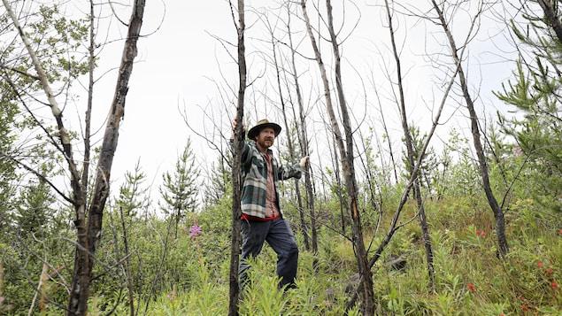 James Steidle pose devant des feuillus tués à l'aide de glyphosate.