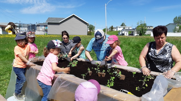 Des enfants en compagnie de 3 adultes plantent des semis dans une jardinière.